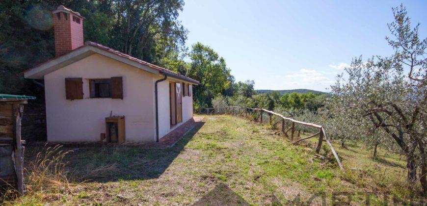 Annesso Agricolo in Muratura nelle Colline Toscane