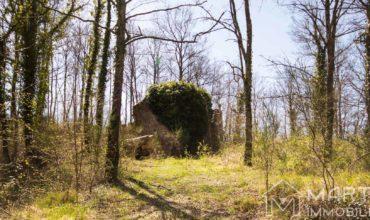 Casa in Campagna da Ristrutturare con Terreno