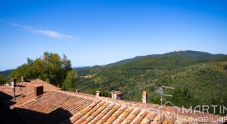 House in Tuscan Village with View and Basement